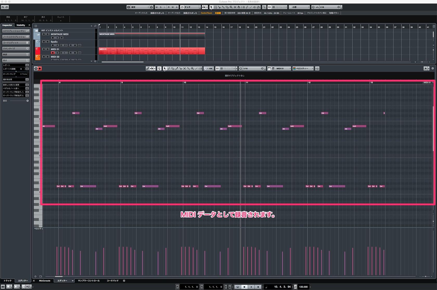 Montage,MODX  Arpeggiator(アルペジェーター)をMIDIデータにしてSteinberg Cubaseに録音する方法!(初心者用)