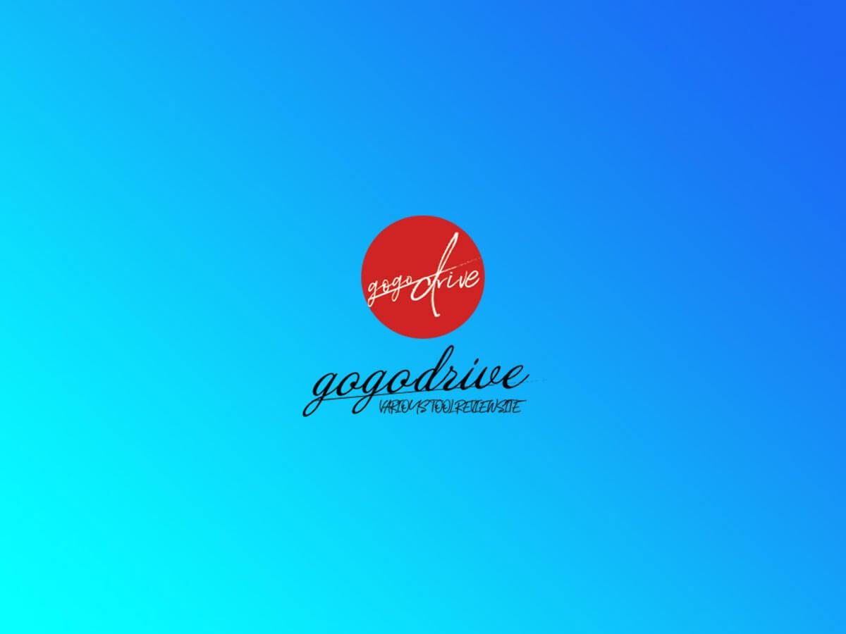 gogo-drive.com(ゴーゴードライブ)blog立上げから9ヶ月運営してみて思った事